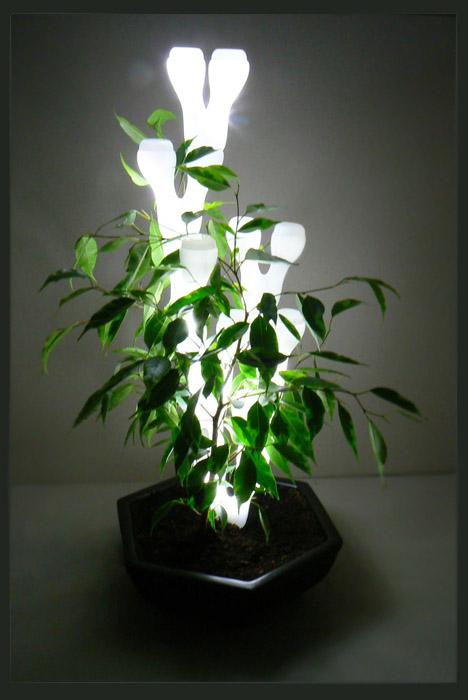 Ivy light par marcela kawka blog esprit design for Lampe pour plante d interieur