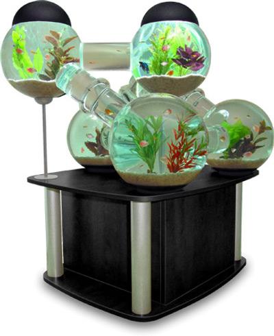 Decoration Aquarium Nettoyage