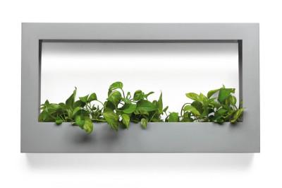 Teracrea le v g tal s 39 intalle chez vous blog esprit for Cadre mural plantes