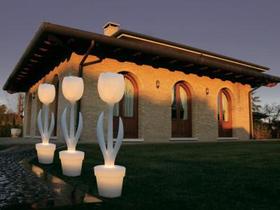 Tulip lumineuse par Moredesign