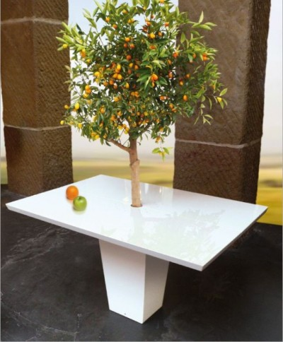 Table manger sous un arbre par Style Mezza