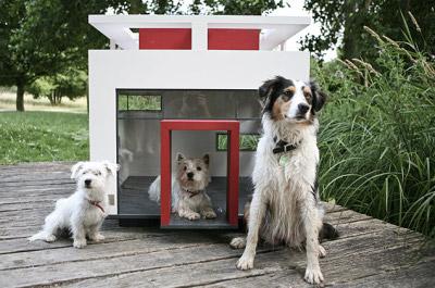 Loft canin par BestFriendsHome, blog-espritdesign.com
