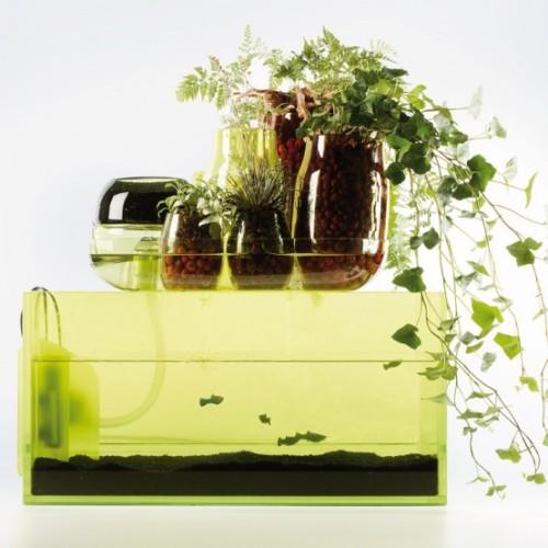 L'Ecosystème idéal par Mathieu Lehanneur mais pas que...