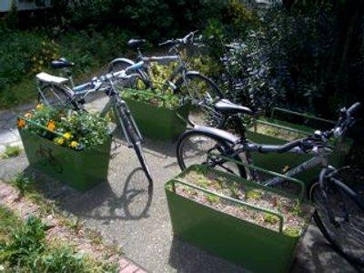 Plantlock : cycle et botanique