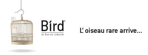 L'oiseau rare arrive ... Focal Bird, pack audio 2.1 compact