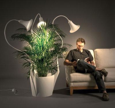 Concept Spotlights par Caroline Schilling