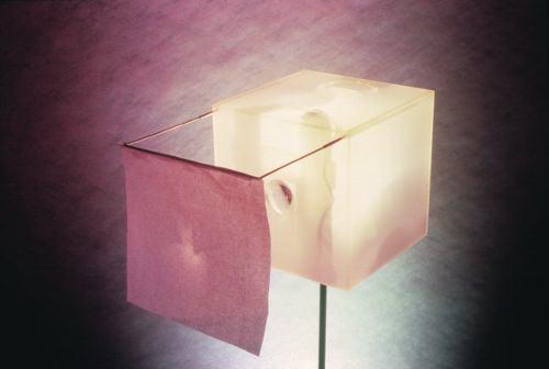 Trilogie domestique : le diffuseur de lumière, d'images et de mémoire (1991) - matali crasset