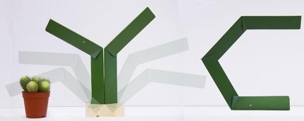 Mantis la lampe Mante religieuse par Guillermo Zambrano M