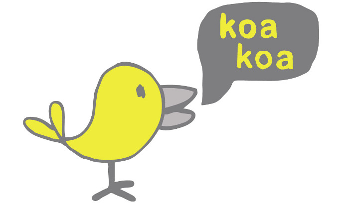 KOA KOA la box pour jeune designer en herbe