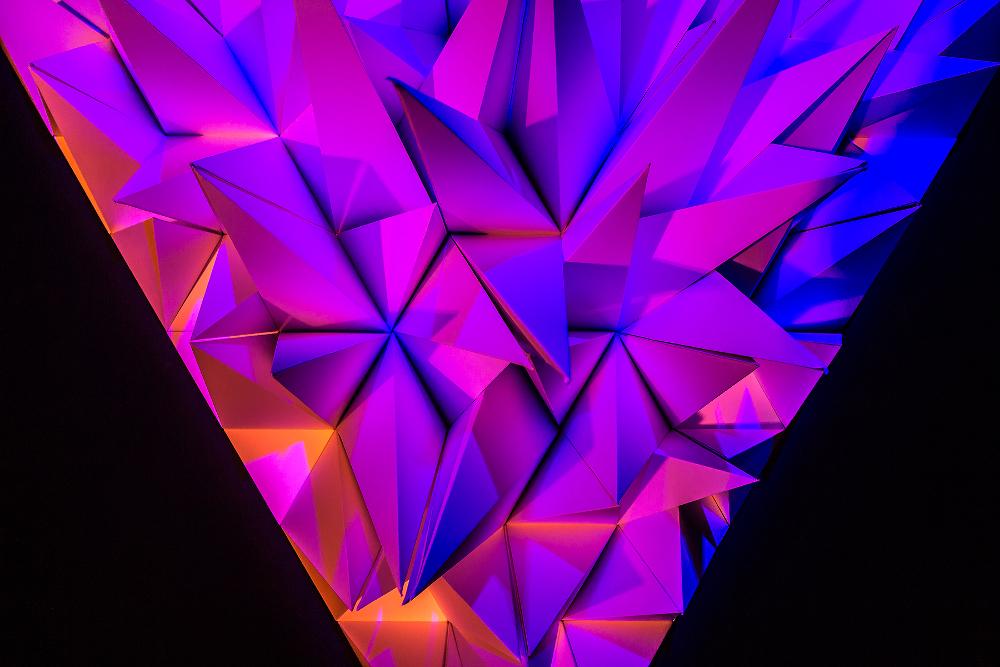 Flynn Talbot / Australie - Primary installation pariétale en trois dimensions - Photo: John Madden