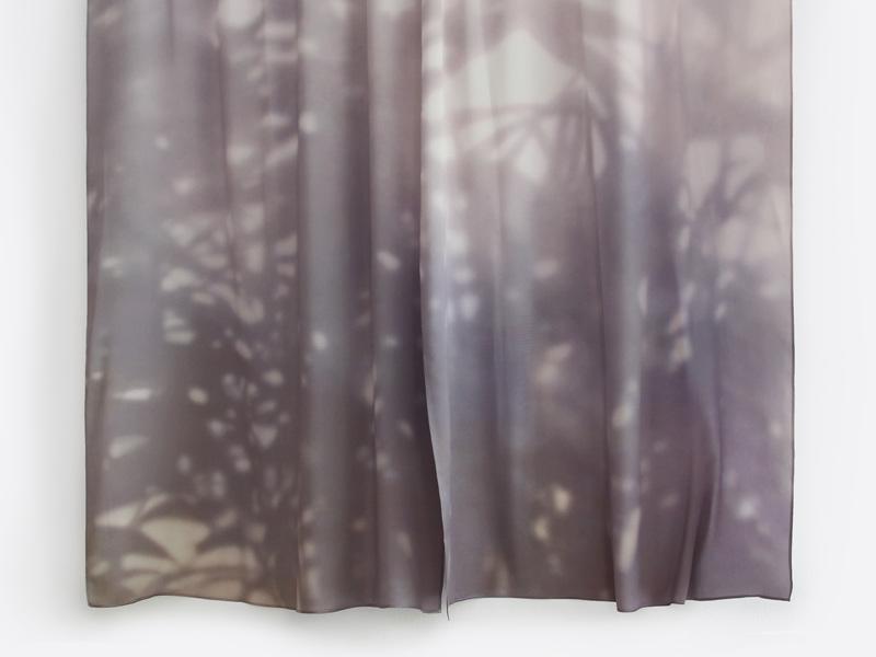 Shadow Curtain de Louie Rigano