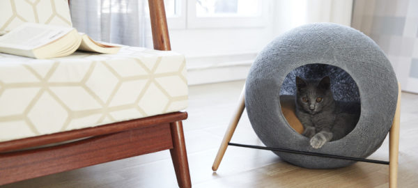 Crowdfunding : Mobilier à chat Meyou Paris