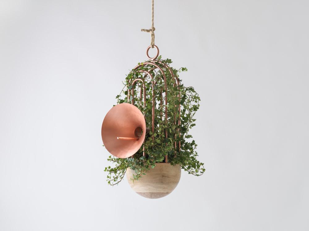 Orator mangeoire à oiseaux sonore par Katia Tolstykh