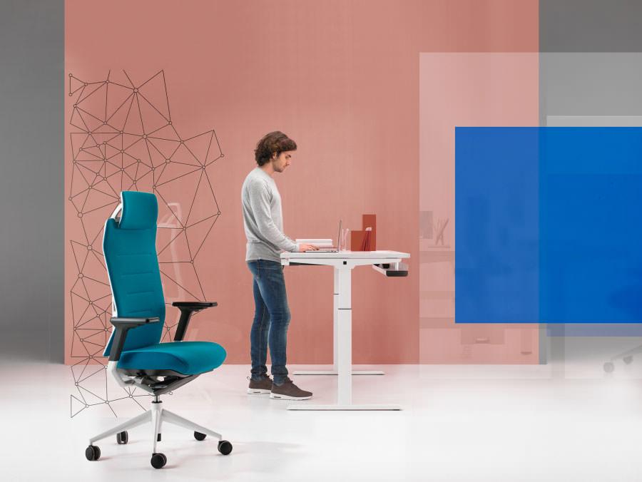 TNK Flex chaise de bureau par Alegre Design