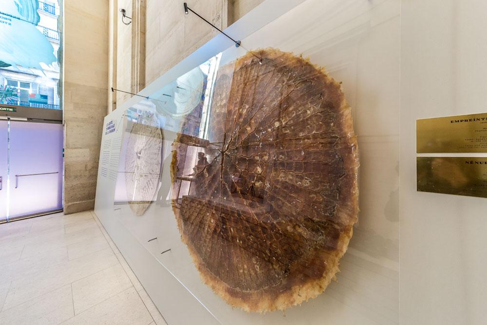Empreinte IV par Mona Oren - exposition l'Empreinte du Geste au Musée des Arts Décoratifs de Paris © Seen By Kloé pour Blog Esprit Design