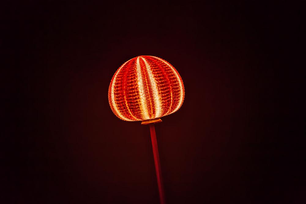 Lampe en oursin par Nicolas Cesbron - Galerie Antonine Catzéflis © Seen By Kloé pour Blog Esprit Design