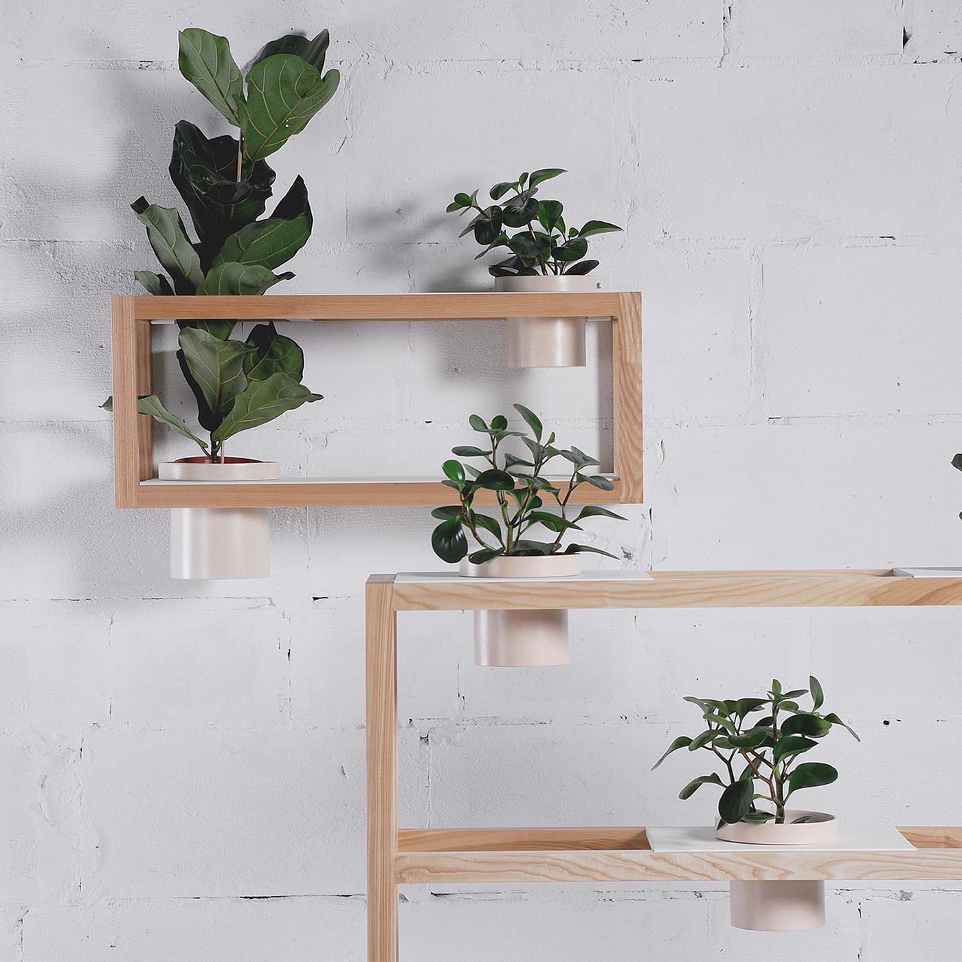 Projet Etudiant : Hanging Garden Planters la console par Dariya Stadnichenko