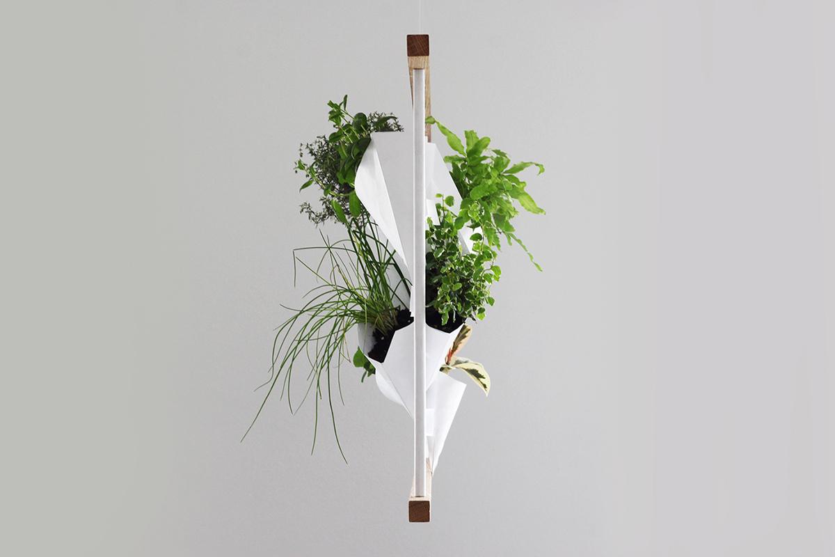 Greenwall 2017, le panneau végétal de Franck Grossel