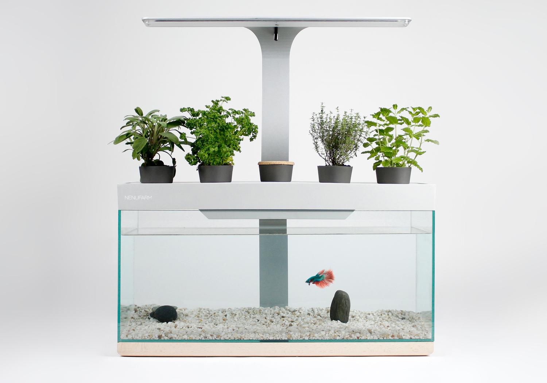 Crowdfunding : Aquarium Potager, l'écosystème d'intérieur !