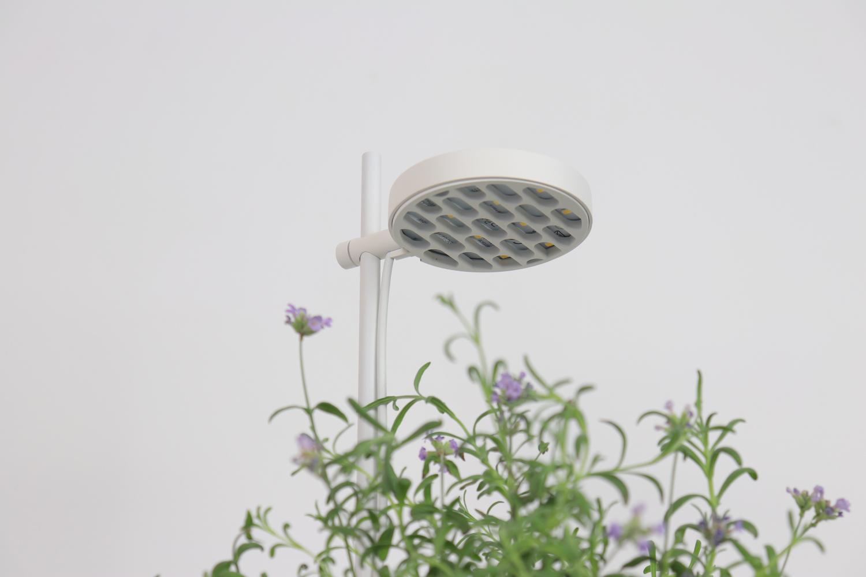 Crowdfunding : Prêt à Pousser revient avec son Nano Garden